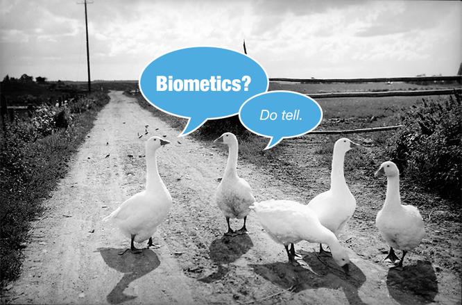 Get the Scoop on Biometrics