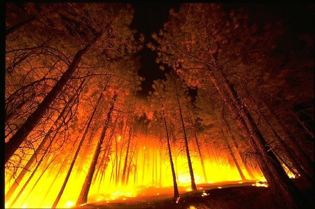 Tips to keep your home safe from wildfires