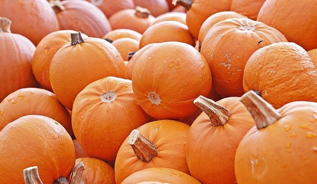 Nutrition Challenge: Pass the pumpkin